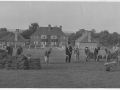 Bulbery sports field under construction 1951