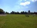 Bulbury Field