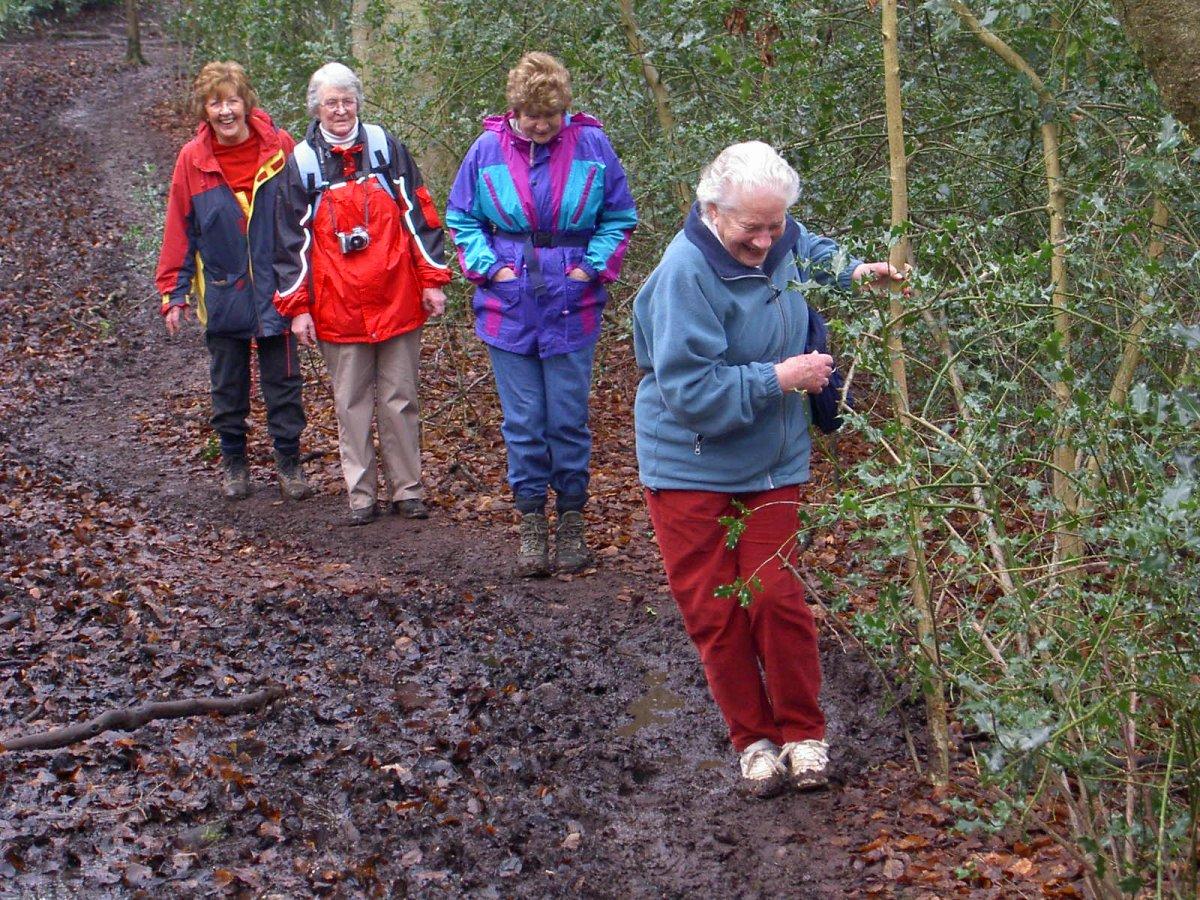 A walk along Test Way on 18 Feb 06