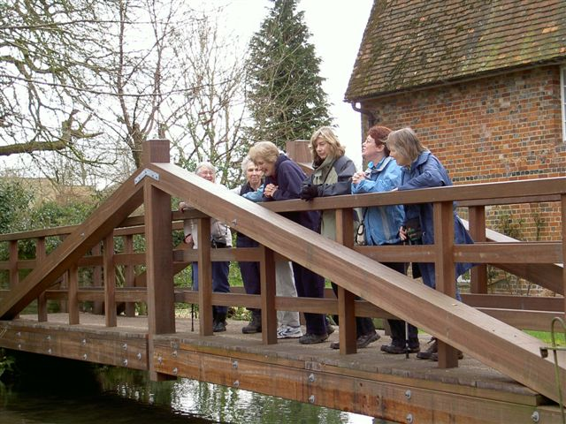 Our walk in March involved a pause overlooking  a well stocked River Test in Whitchurch