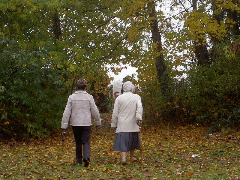 Walking through the leaves